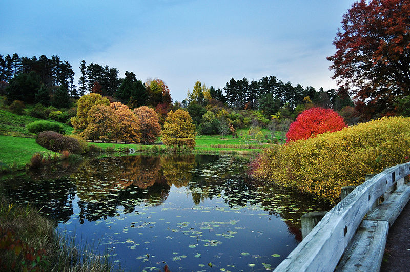 Jardim-Botânico-da-Universidade-Cornell