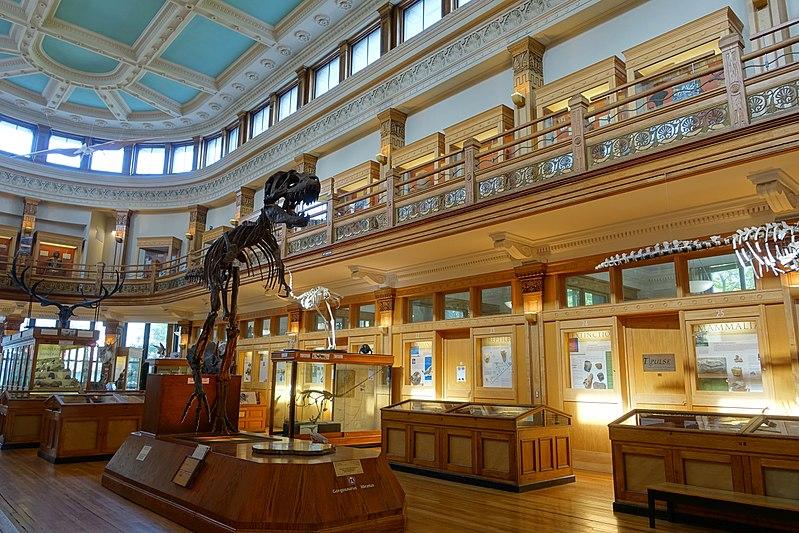 Museu-Redpath