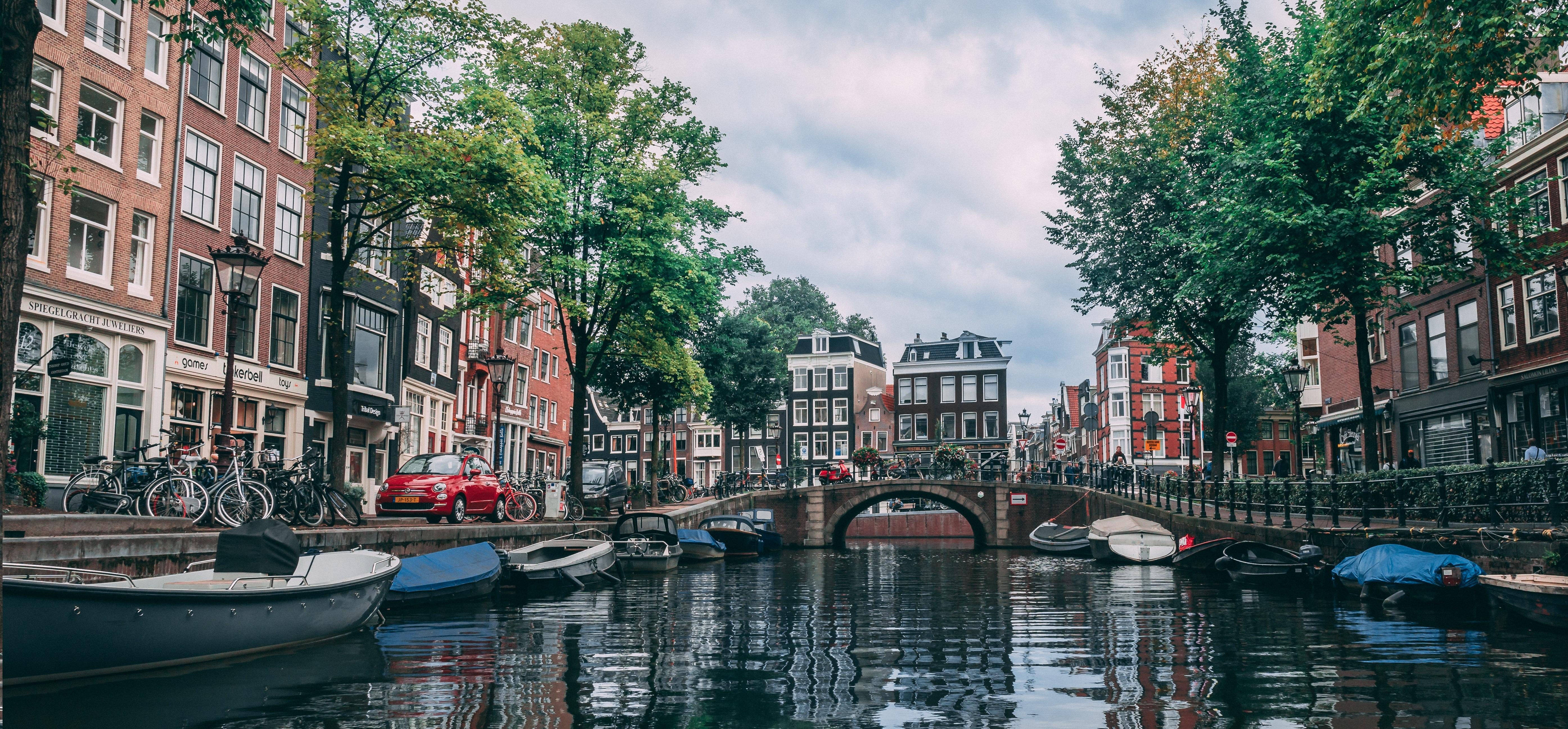 Estudar na Holanda: melhores bolsas