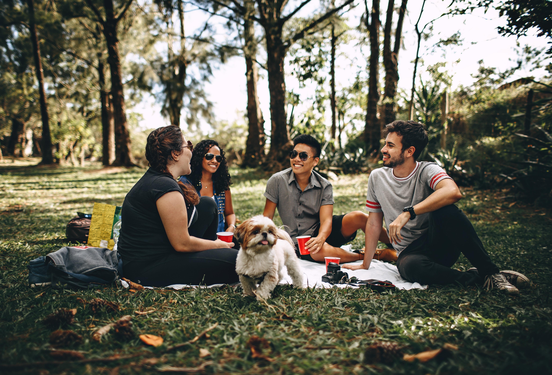 7 dicas para fazer amizade no intercâmbio