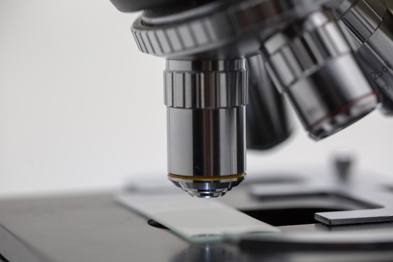 Biologia nos EUA: melhores faculdades