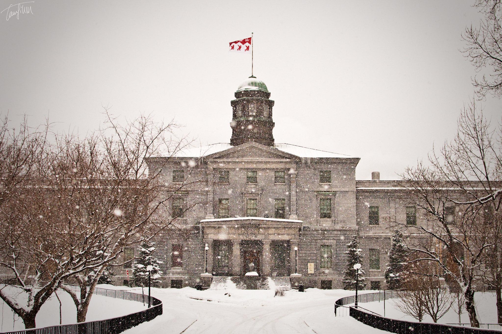 melhores-universidades-do-canada-para-estudantes-internacionais-mcgill