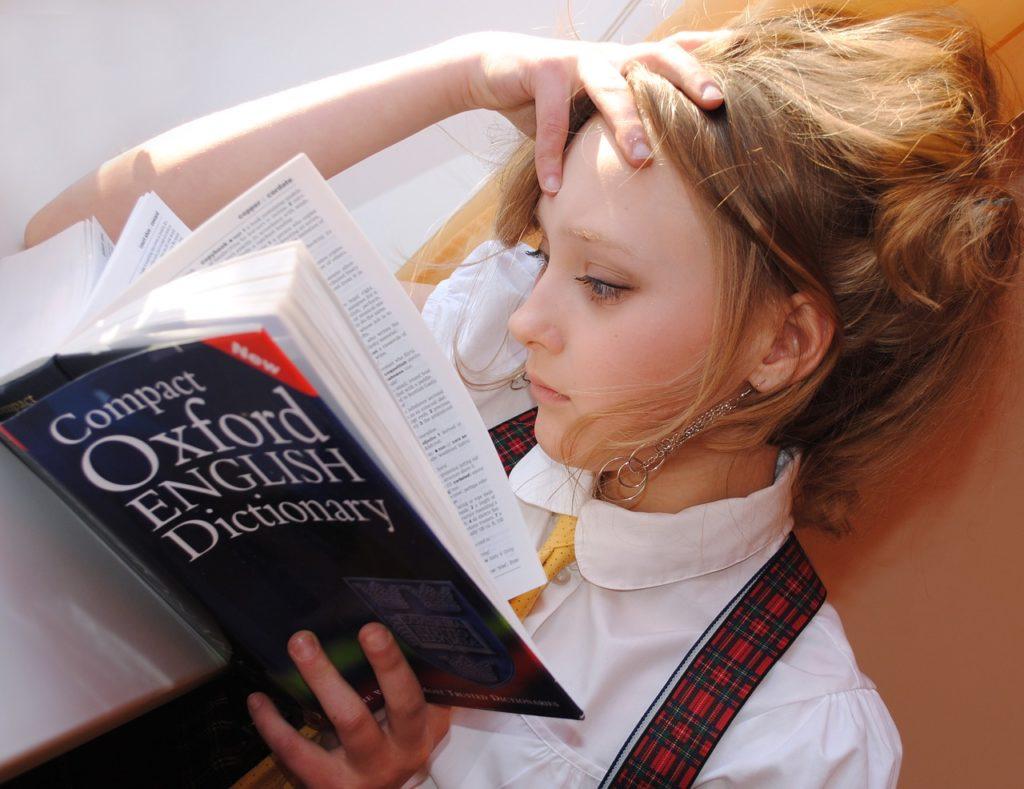 dictionary-conhecimentos-sobre-intercambios