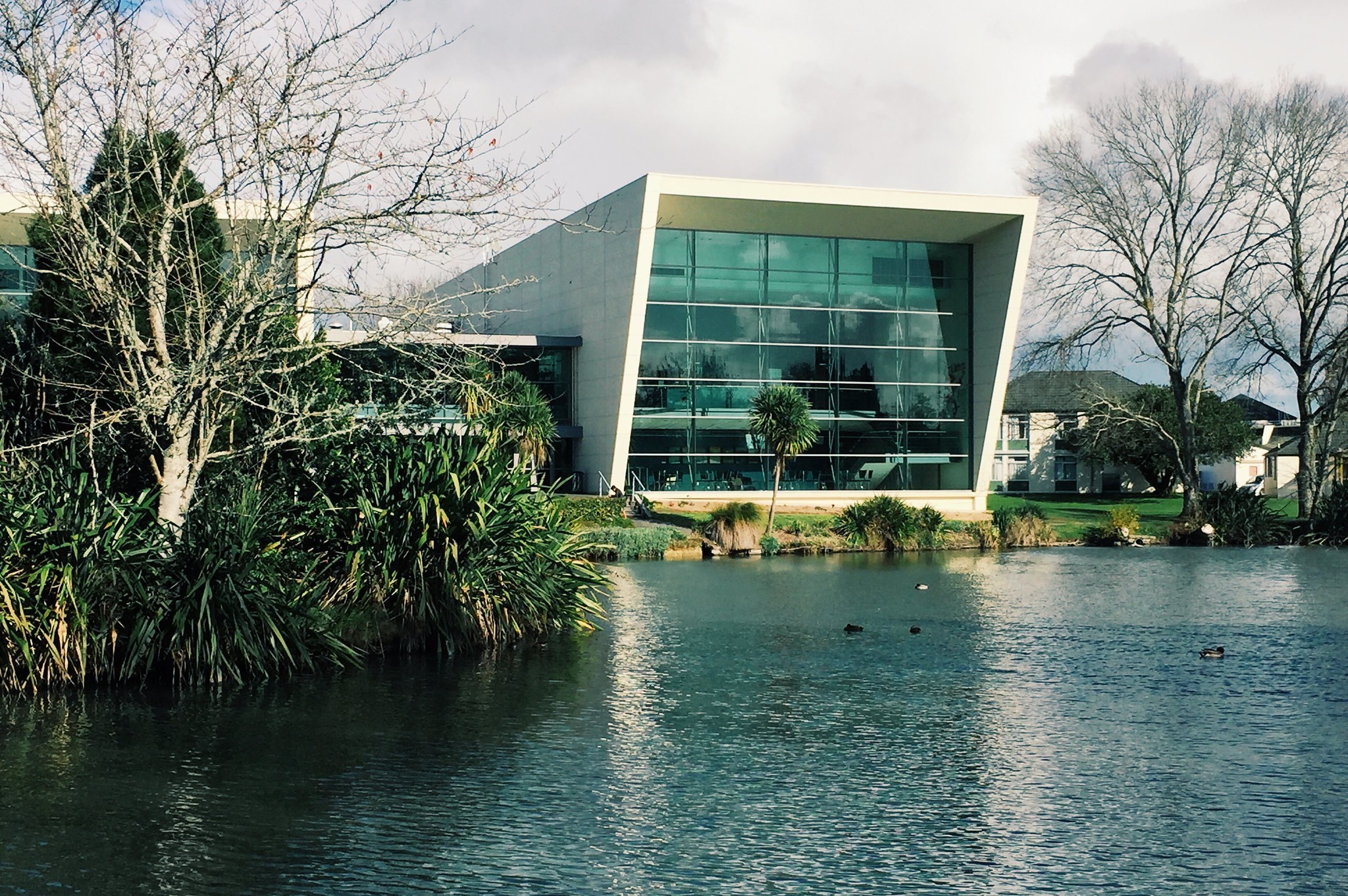 2-visto-de-estudante-neozelandes