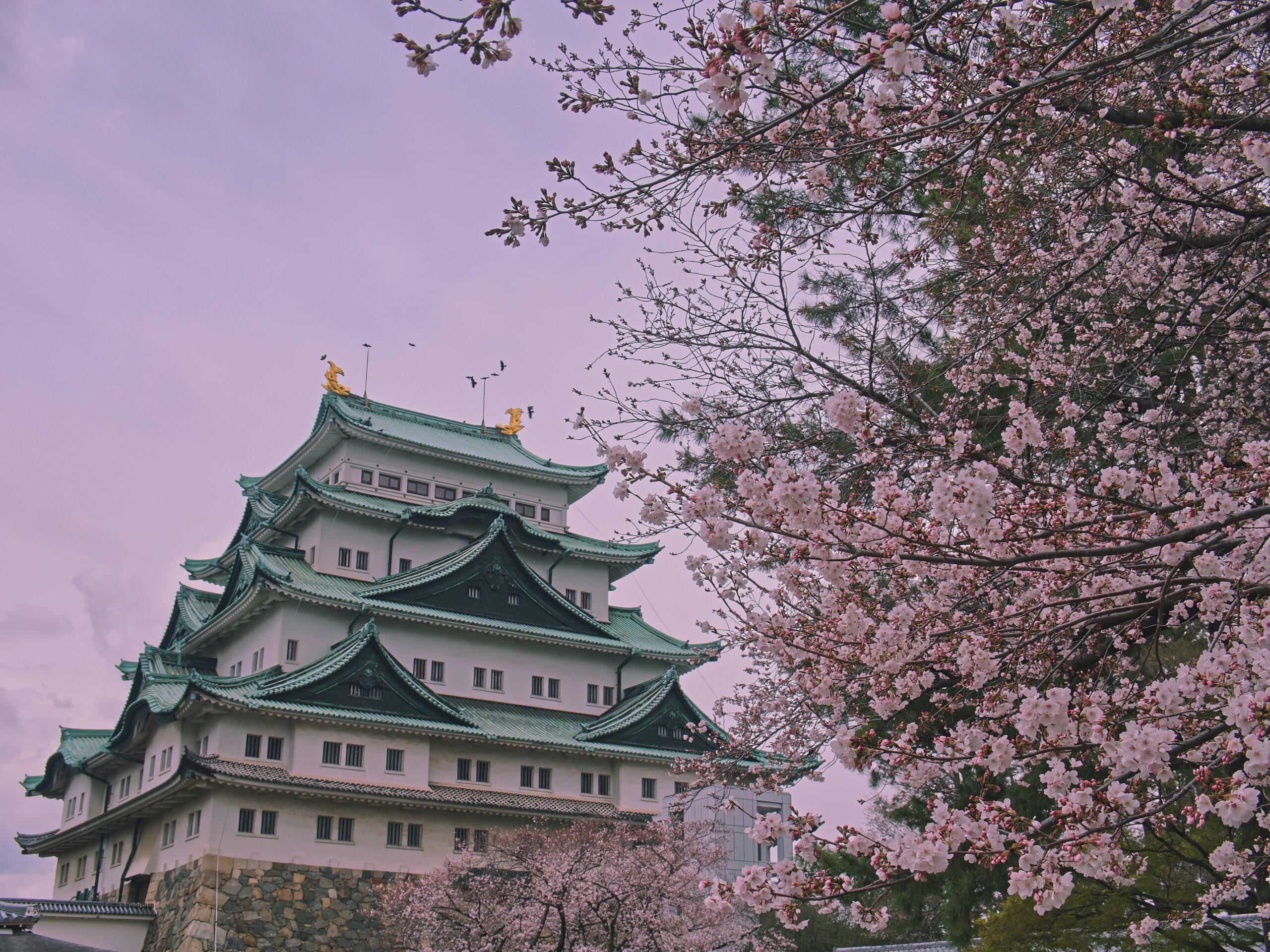 melhores-cidades-para-estudar-no-japao-nagoya