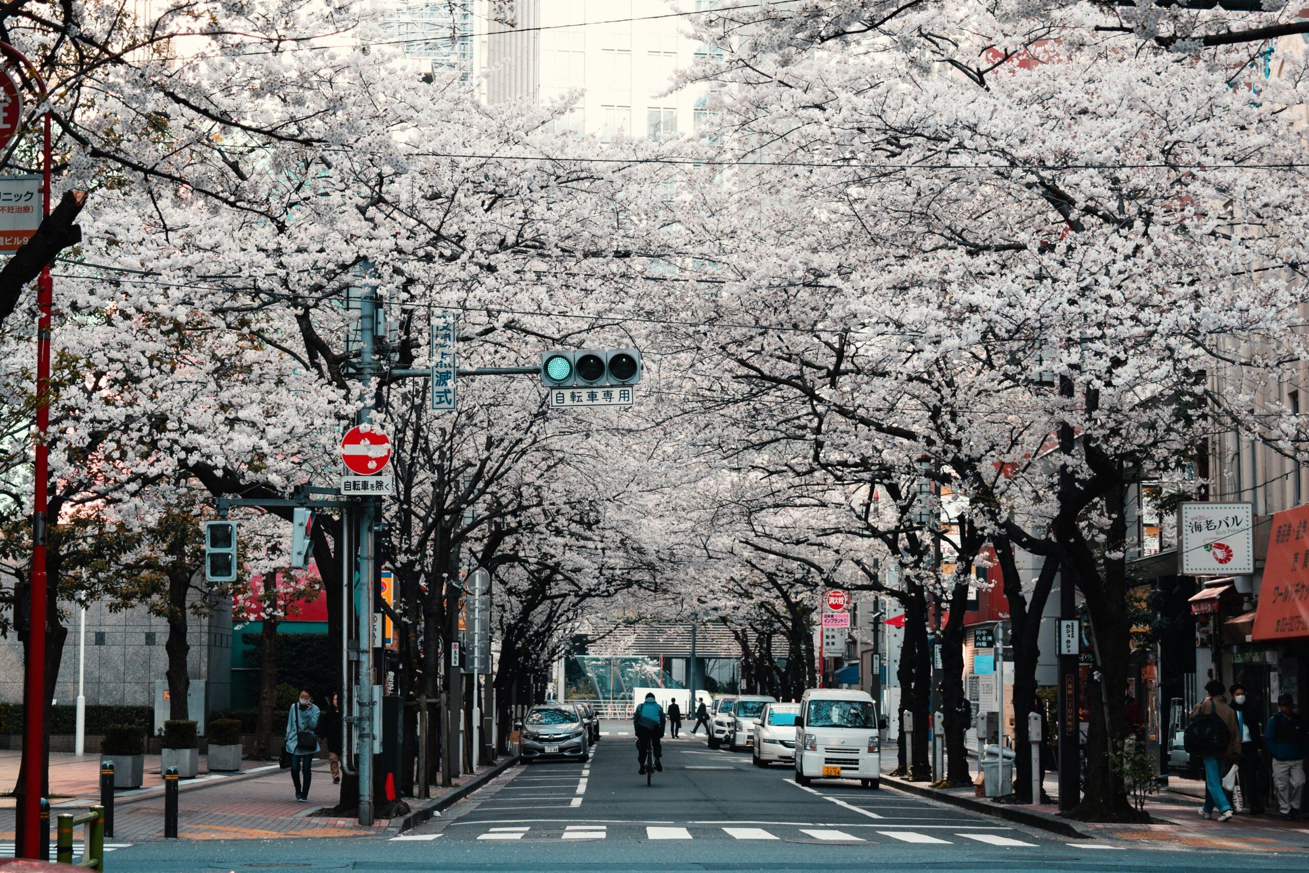 melhores-cidades-para-estudar-no-japao-toquio