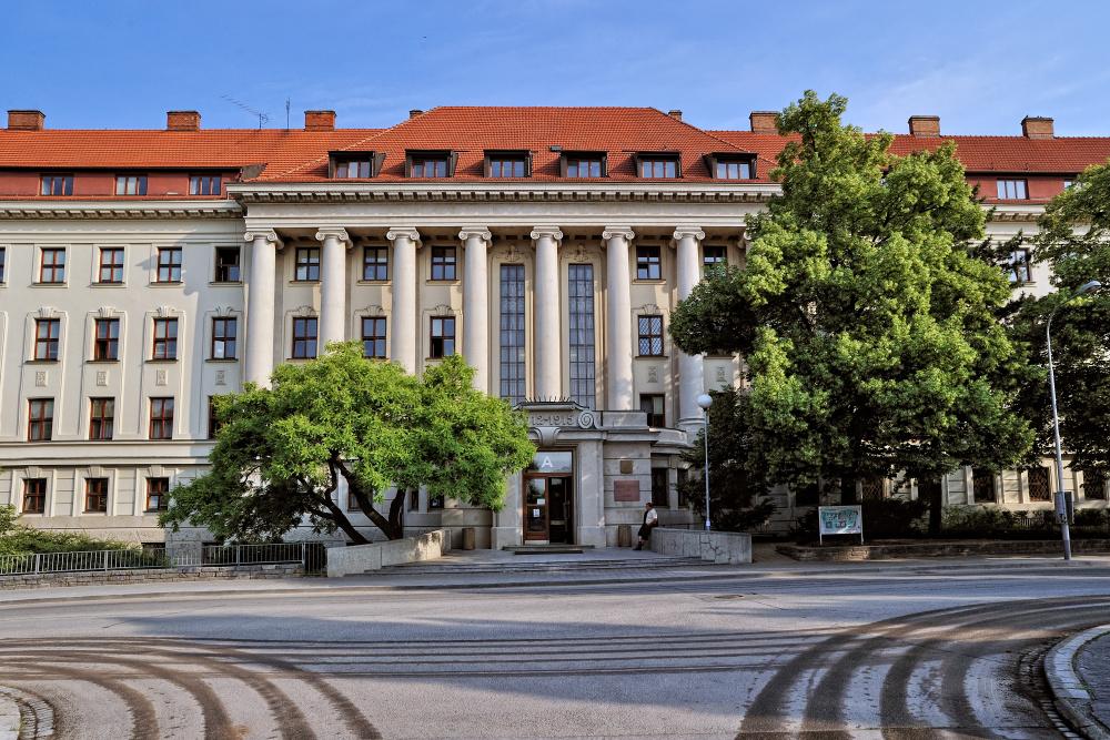 8 programas de mestrado para engenheiros florestais na Europa 1