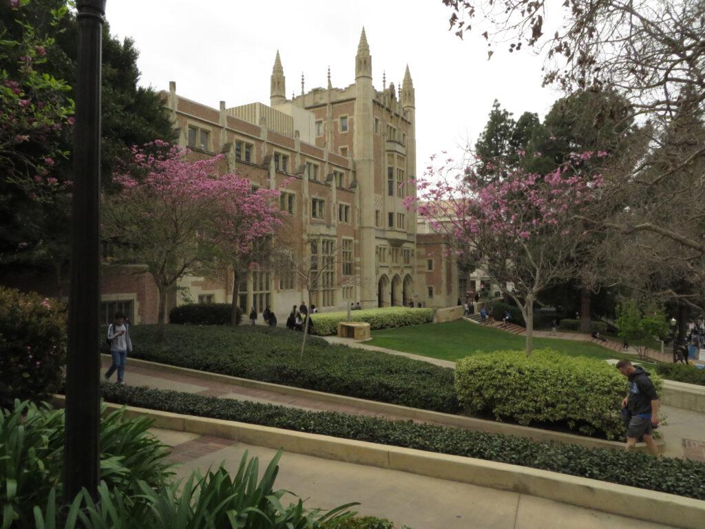 UCLA-Filme