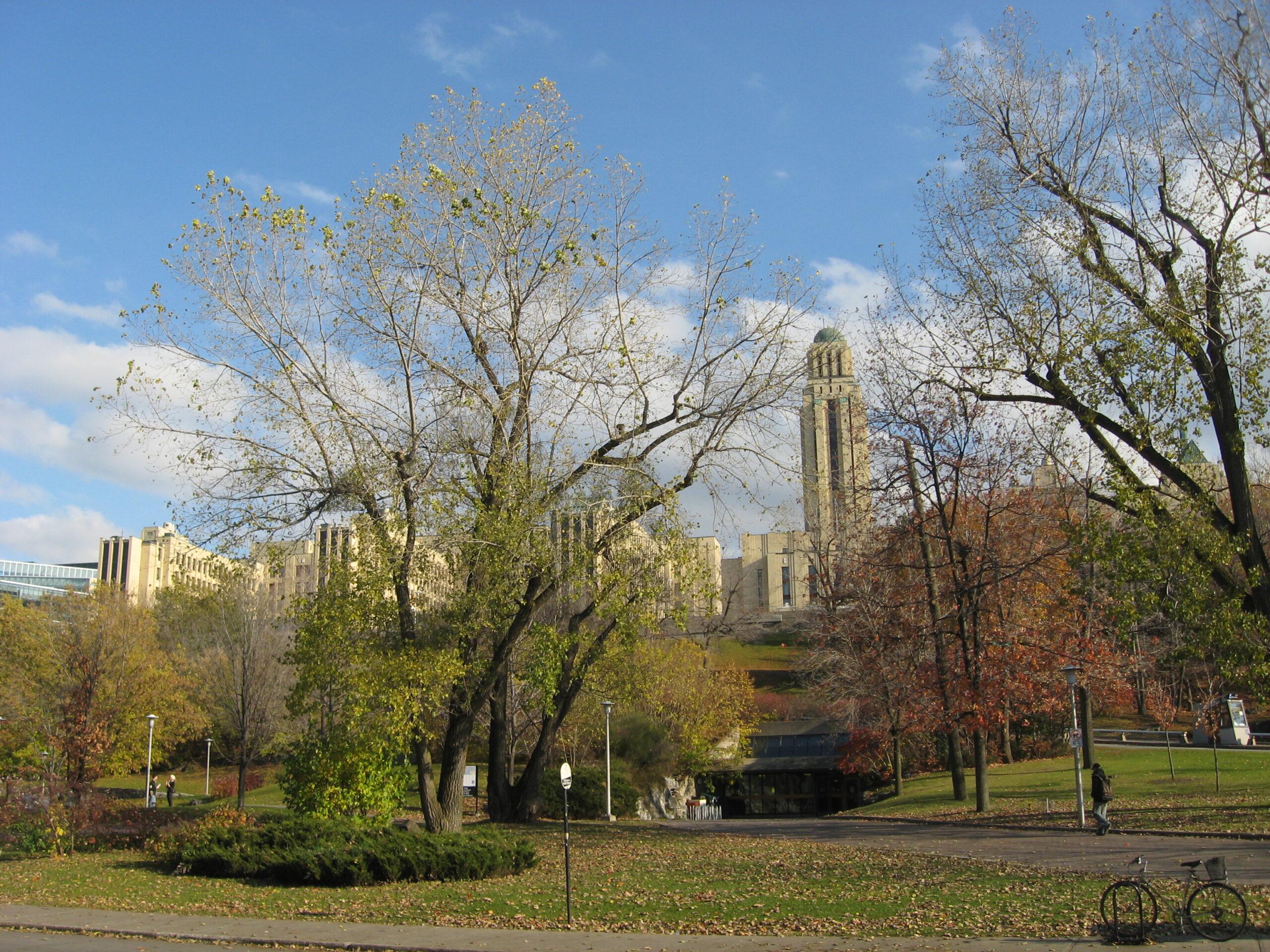 Por dentro da Universidade de Montreal