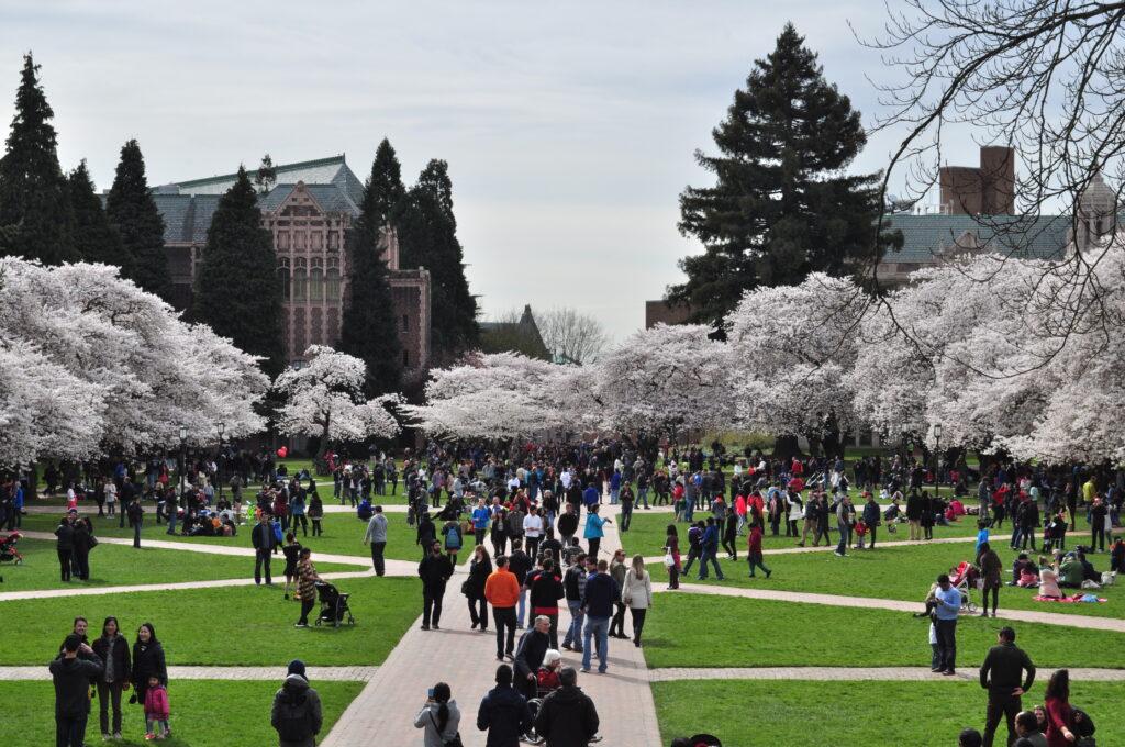 universidade-de-Washington-quadington-quad